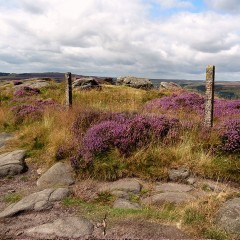Peak District National Park, Sheffield