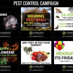 Pest Control Campaign
