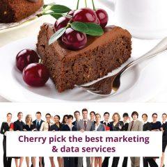 Primeprospects Marketing Brochure